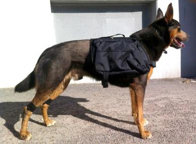 jaxon i väska